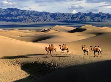Những điều thú vị chỉ có ở Mông Cổ