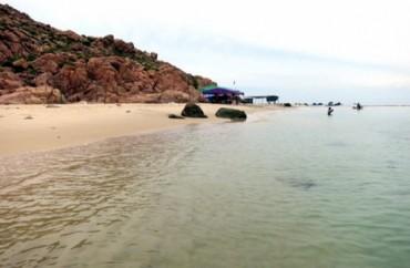 Tận hưởng bữa tiệc bãi biển ở Quy Nhơn