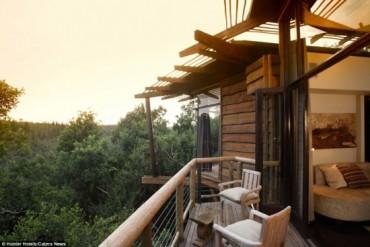 Tận hưởng 1 đêm tại khách sạn hoang dã trên ngọn cây