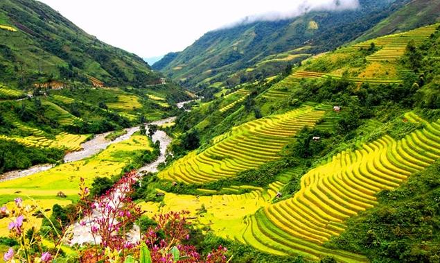 Hà Giang - GSV Travel
