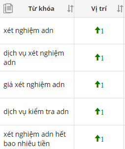 adn-key-top