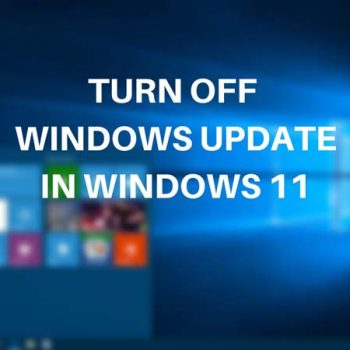 tắt Windows Update trên Windows 11